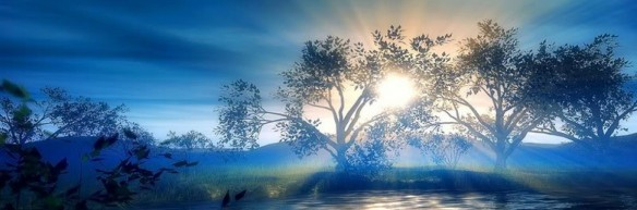cropped-trees-blue-background.jpg